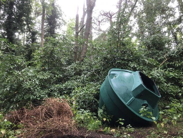 A sewage treatment plant placed in the woods out of the way