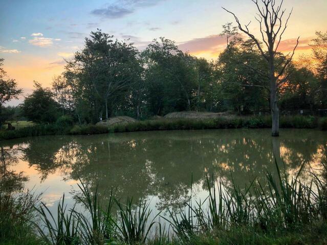 Old Oak Lake under sunset