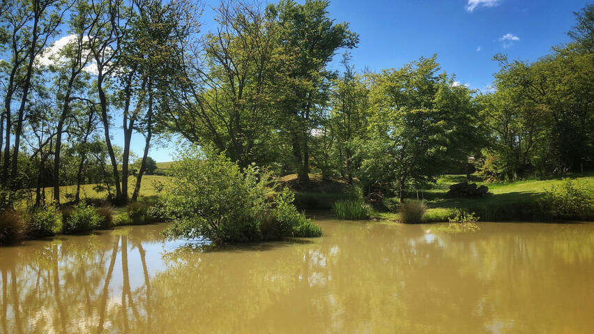 Sunshine beating down over one of the Herrings Farm lakes
