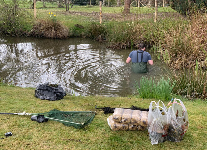 Deep cleaning and rebuilding banks for a large pond near Heathfield